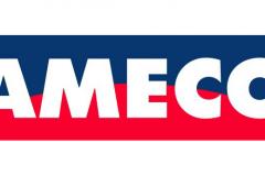 19-meco